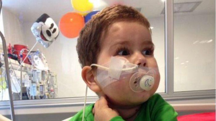10 mil 335 chilenos han dicho ante notaría que no quieren ser donantes de órganos