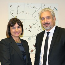 Ana Tironi es la nueva Subdirectora Nacional del Consejo Nacional de la Cultura y las Artes