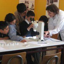 Neurocientífica Kathleen Whitlock y su lapidaria evaluación de la educación en Chile