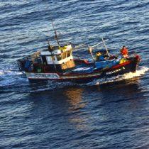 Armada capturó a embarcación peruana en Zona Económica Exclusiva chilena con cerca de 40 tiburones en su interior