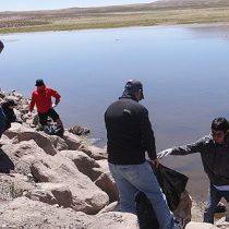 Más de 30 toneladas de basura son extraídas en operativo de limpieza del Lago Chungará