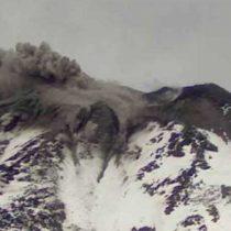 Volcán Nevados de Chillán se encuentra con pulso eruptivo