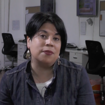 Miradas: Los cuestionamientos en la mala producción de la salmonicultura, por Liesbeth van der Meer