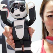 Sale a la venta RoBoHon, el primer teléfono móvil robótico del mundo