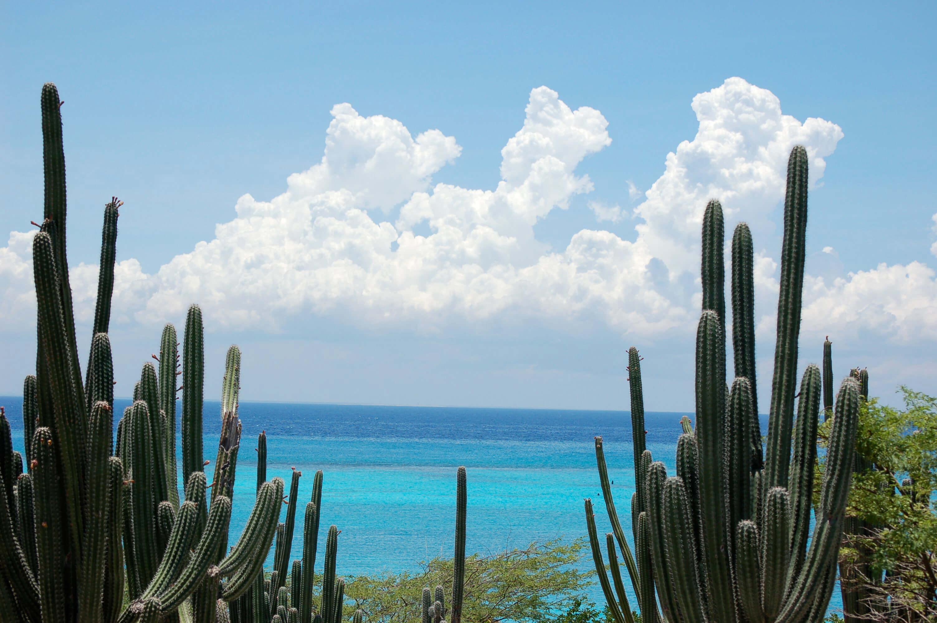 Rodgers-Beach-Aruba