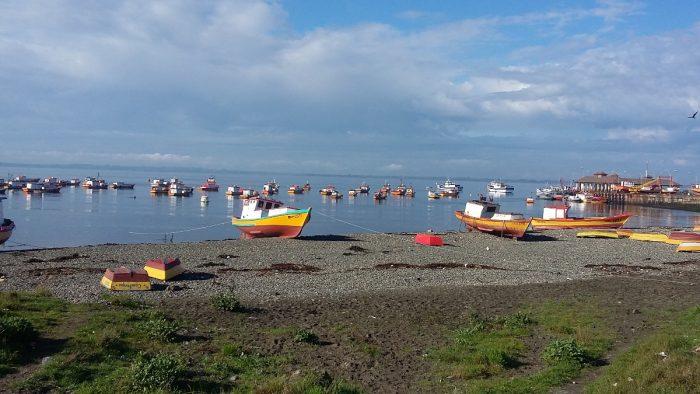 Las casi 120 embarcaciones que diariamente salían de la caleta a buscar mariscos y pescados, hoy se encuentran paralizadas.