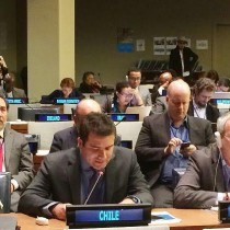 Subsecretario Faúndez destaca en la ONU la participación del mundo indígena en el proceso constituyente