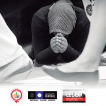Este martes se desarrolla seminario que analiza violencia de género a mujeres con discapacidad
