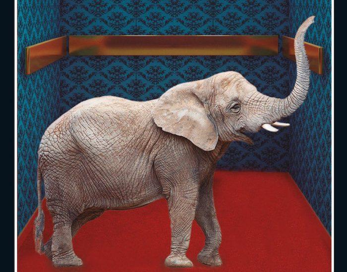 """""""El elefante desaparece"""", de Murakami (un autor para leer en tiempos de crisis)"""