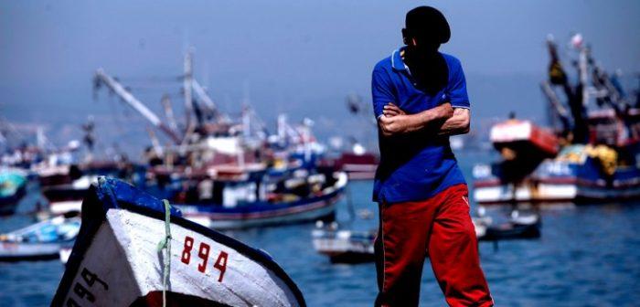 """""""La paciencia se agotó"""":  industria pesquera del Biobío se va a paro indefinido por ley que regula captura de la jibia"""