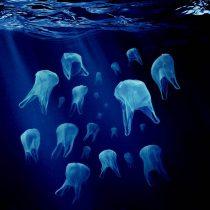 Empresas alemanas preparan sistema para sacar los plásticos del mar