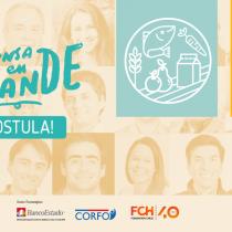 Fundación Chile busca invertir $720 millones en 12 startups innovadoras