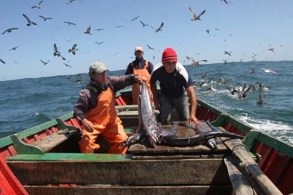 Pescadores artesanales tras prisión preventiva de Orpis: