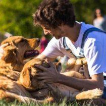 Minsal recula norma que restringía número de mascotas según tamaño de vivienda