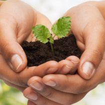 Recuperación justa y sostenible: hacia formas de vida digna
