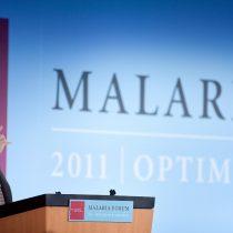 Bill Gates y su esperanza en los mosquitos modificados genéticamente para combatir la malaria