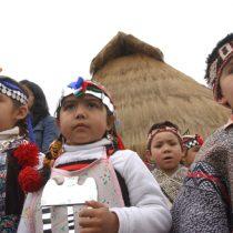 Autores indígenas presentan libro sobre nueva constitución y pueblos originarios