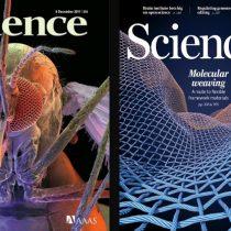 Revista Science pide preservar la colaboración científica tras el