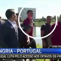 [VIDEO] Cristiano Ronaldo lanza micrófono de periodista a un lago