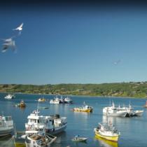 [VIDEO] Timelapse que retrata la belleza de Chiloé y el sur de Chile