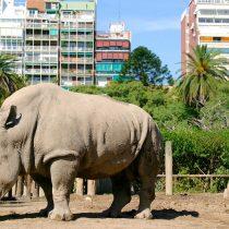 Cierran zoológico de Buenos Aires: