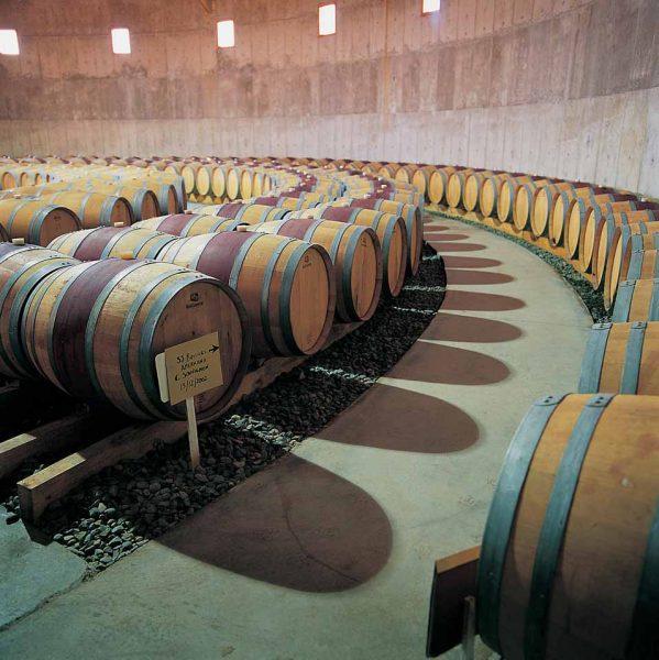 Economía circular en la industria del vino