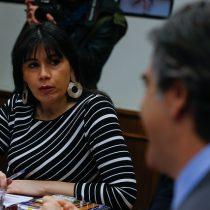 Ministra Javiera Blanco anuncia