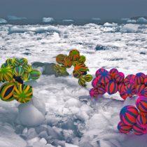 La muestra silenciosa donde el arte contemporáneo reflexionó sobre la Antártica
