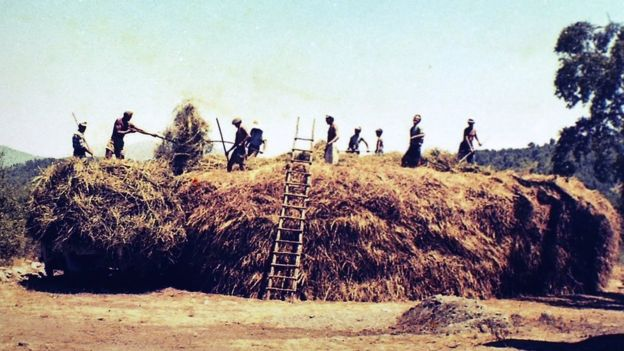 Los habitantes de Colonia Dignidad se dedicaban, entre otras cosas, a la agricultura.