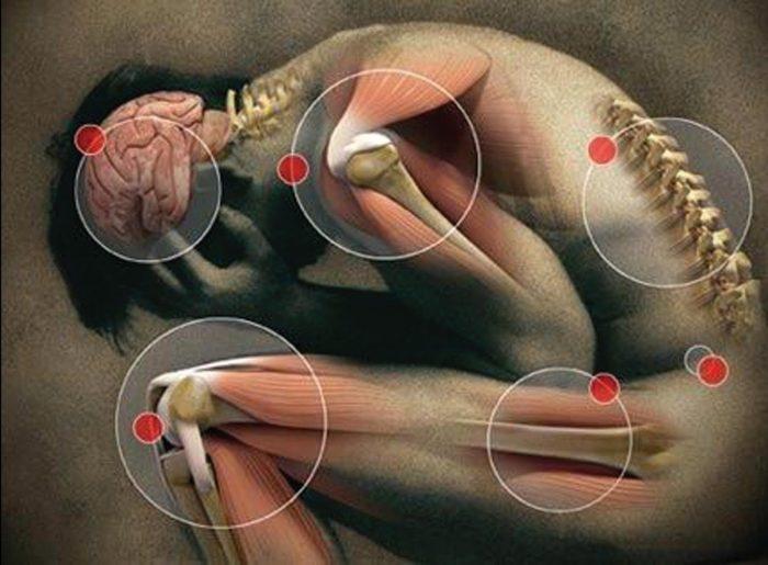 Neurocientíficos chilenos crean moléculas en laboratorio para inhibir el dolor corporal