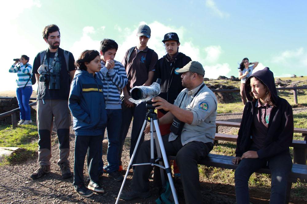observacion-aves-rapanui