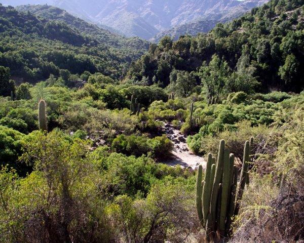 Río Clarillo se convierte en el primer Parque Nacional de la Región Metropolitana