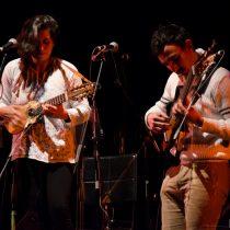 Cuarto encuentro de charango y otras hierbas en Teatro Municipal de San Joaquín, 29 y 30 de julio. Entrada liberada