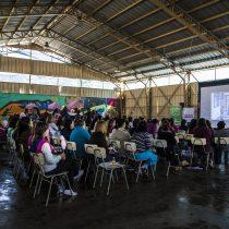 INJUV lanza iniciativa que lleva el cine de forma gratuita a todas las regiones del país