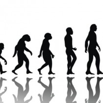 Darwin y las mutaciones