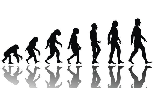 Cómo evolucionaremos los humanos en los próximos 200 años