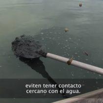 [VIDEO] Denuncian alta contaminación de las aguas de Río a días de comenzar los Juegos Olímpicos