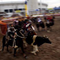 """Diputados UDI presentan proyecto de ley para celebrar el """"Día Nacional del Rodeo"""""""