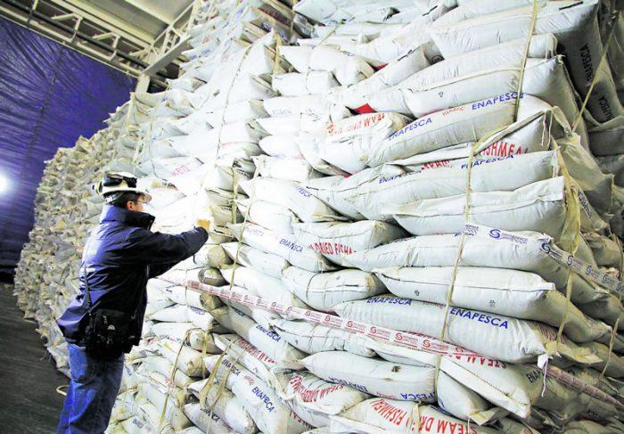 La querella del SII contra la empresa Bahía Coronel por el mayor decomiso de harina de pescado ilegal y el error de Sernapesca