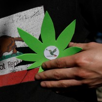 Comisión de salud rechaza indicación que prohibía el autocultivo de marihuana