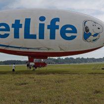 Nueva crisis en las AFP: Snoopy fue