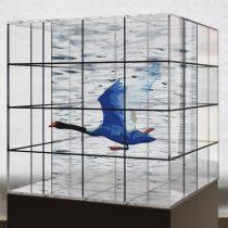 Embajada de Alemania acogerá exposición de artista visual Hernán Miranda
