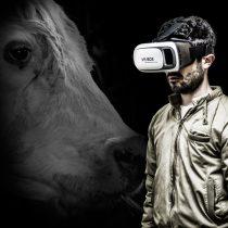 A través de una experiencia virtual, Animal Libre te
