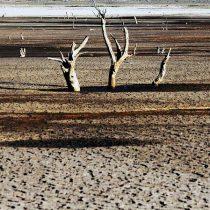Qué se juega con la Reforma al Código de Aguas