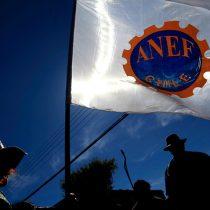 Elecciones en la ANEF: peligra uno de los últimos bastiones de la Nueva Mayoría en el mundo gremial