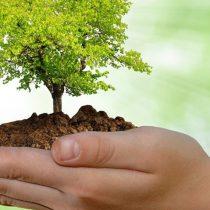 """UACh convoca a Concurso Literario y Científico """"Hemisferios"""" sobre el respeto al Medio Ambiente"""