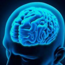 Asocian el Alzheimer con la producción irregular de óxido nítrico en cerebro