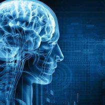 Matemáticos chilenos se meten en la cabeza humana y elaboran modelo predictor de suicidios
