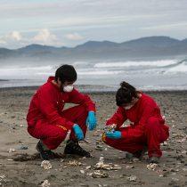 """Greenpeace tras terremoto en Chiloé: """"Exigimos conocer protocolos de las salmoneras ante una nueva catástrofe ambiental"""""""