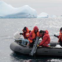 Hackatón de Divulgación Científica tendrá su epicentro en Punta Arenas